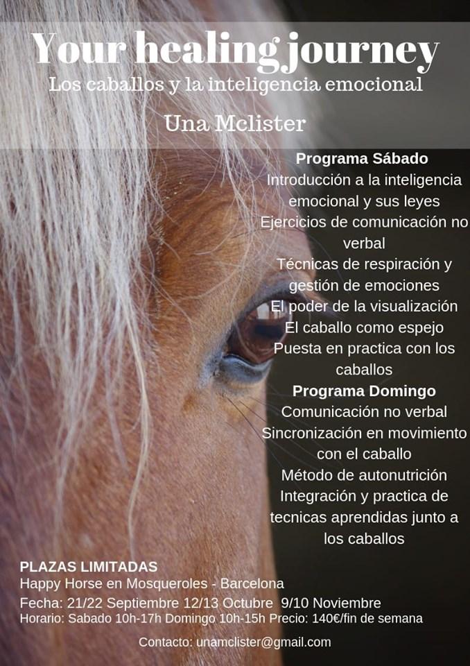 Los caballos y la inteligencia emocional
